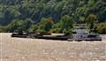 Rive Rhine