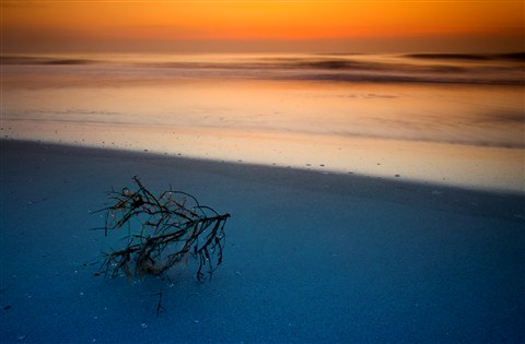 filtered sunrise