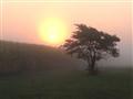 A Rural Sunrise