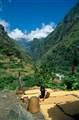 Rural life in Himalayas