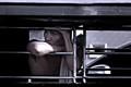 Mamang Tsuper (Mr. Driver)