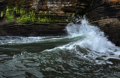 Spooners Cove 21