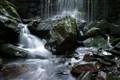 Moss & Waterfalls