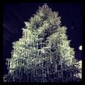 Zurich Swarovski Tree