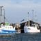 Denmark, Jutlandia, Skagen fishing harbor