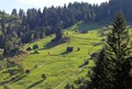 Somewhere in Transylvania