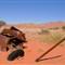 emerging-from-the-desert