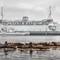 Seals ferry 5