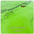Green & Duck soup