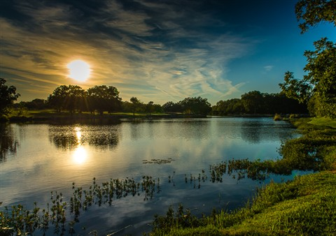 Berry Creek Pond