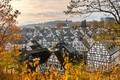 November-in-Germany