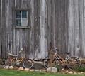 2 Bikes & Window