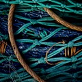 Fish net detritus . . .