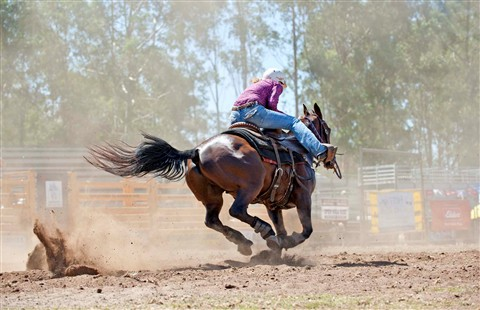 _7BL3655 picton rodeo 70-200