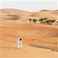 Liwa Oasis in UAE