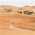Liwa Oasis in UAE
