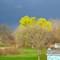 Spring Storm 1
