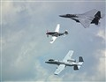 Warbirds: Past and Present