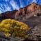 Indian Gardens/Grand Canyon