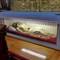 P1020201 autel latéral notre-dame des victoires