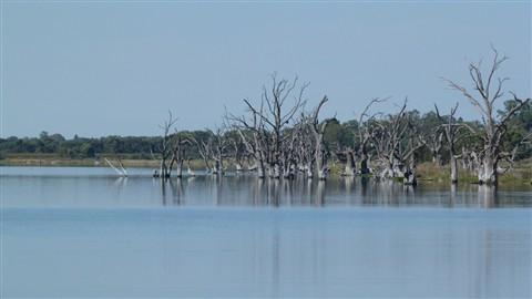 Lake Bonney shoreline Sth Aust