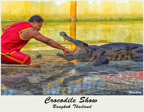 Crocs Farm Bangkok