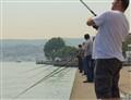 Fishermen Along The Bosphorus
