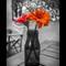 Flores- 1080 instagram- 1080 instagram