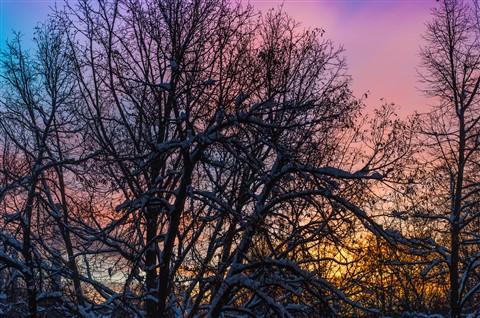 MUC_winter_sunset-1