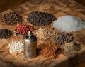 spices  one studio light