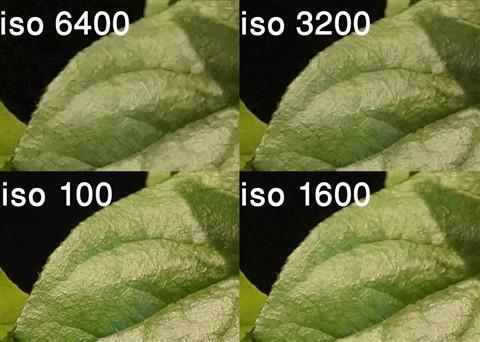 A77 fimware 1.0 6400-100 iso crops