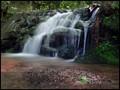 Waterfall In The Brook