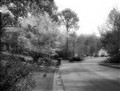 Anniston , Ala SpringBW