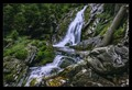 Waterfall white ravine