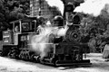 Narrow Gauge Locomotive B&W