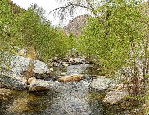 Sabino Canyon-2290 LR pano Panorama-Edit LR post