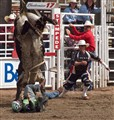 Rodeo Risk