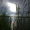 01-31-13 Ambiance Okavango
