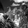 Santa Maria of Palma