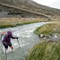 2016-02-19 New Zealand Te Araroa 2813 Clent Hills Track Turtons Stream River Crossing Joanne