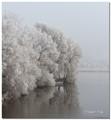 FrozenFog_019953E071222