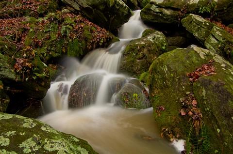 Anglin Falls -01 018_P_edited-1