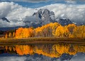 Oxbow Bend - very stormy morning, but the light opened up for about 2 minutes and it was gorgeous. Taken this weekend.