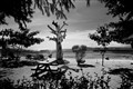 Gilli island