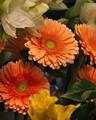 A floral display