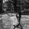 Albin_balancing_4dpr
