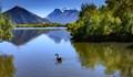 Looking to Mount Earnslaw and Earnslaw Glacier NZ