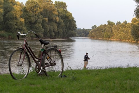 about_bike_and_fisher_800x
