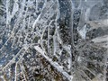Ice crystals 2