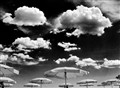flyng umbrellas
